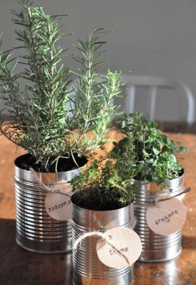 8 Darling DIY Herb Garden Gifts (DIY Gifts for Foodies Week