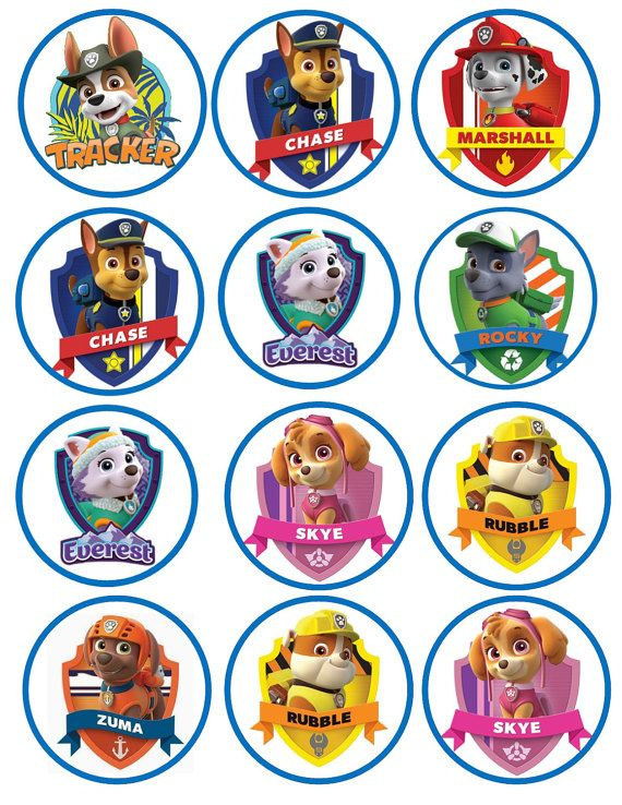Paw Patrol Edible Cookie X2f Cupcake Toppers Paw Patrol Cupcakes Paw Patrol Birthday Paw Patrol Cupcake Toppers