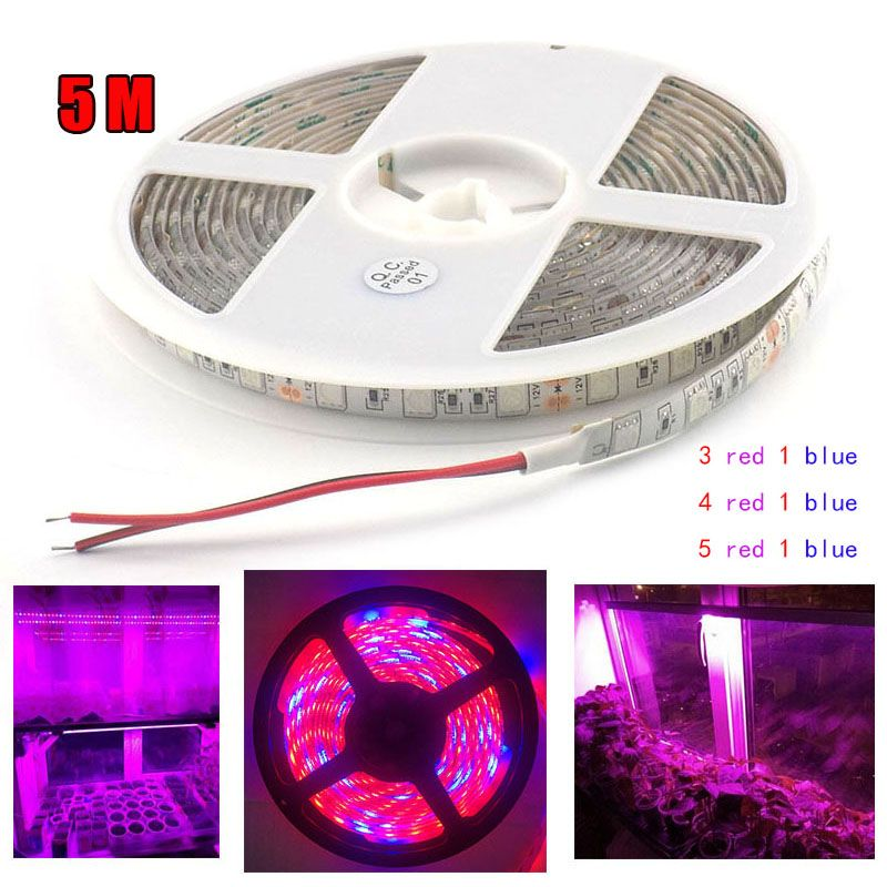 Waterproof 5m 5 Red 1 Led Grow Strip Lamp Blue Lights Dc 12v Plants Lamp Led Lighting For Indoor Flow Led Grow Lights Grow Lights For Plants Led Strip Lighting