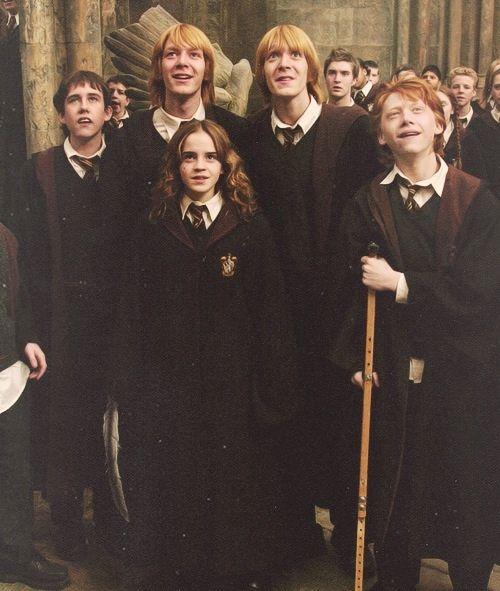 100 Ron Weasley Tumblr Madchen Meme Harry Potter Bilder Emma Watson Korper