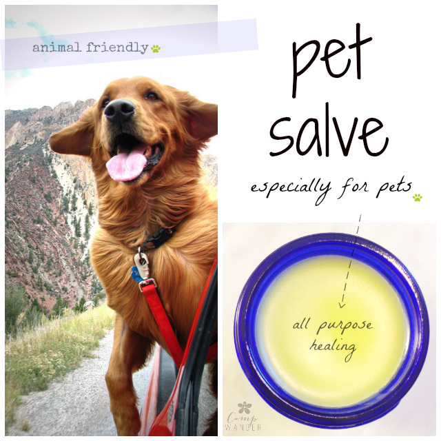 Animal Friendly Pet Salve Natural Pet Remedies Pet Remedies Essential Oils Dogs