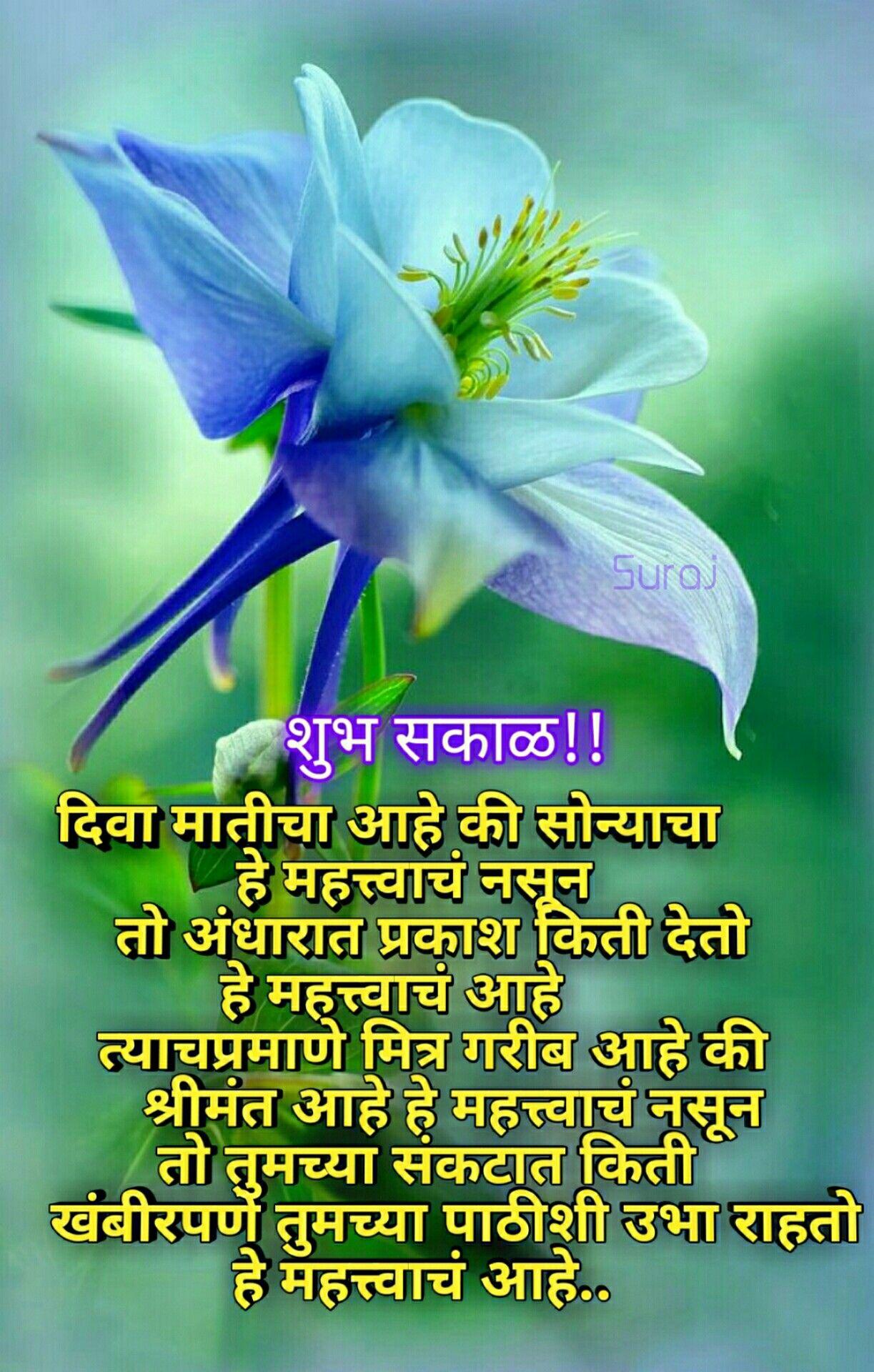 Good Morning Marathi Mornings In 2019 Good Morning Plants Garden