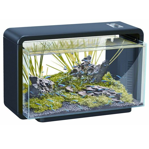 SuperFish Aqua Scaping Aquarium Home 25 schwarz Aqua scaping - deko fur aquarium selber machen