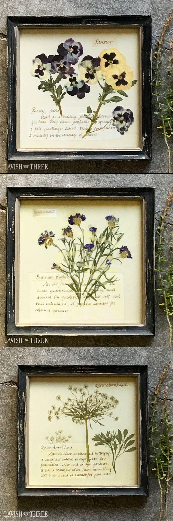 Perfect Pansies Framed Vintage Floral Botanical Print