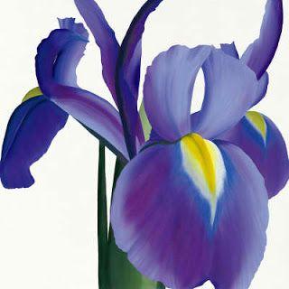 Flowers Around The World The National Flower Every Country F Iris Art Iris Flowers Art