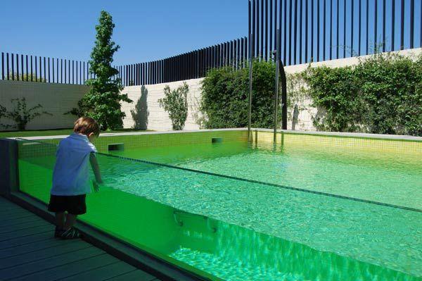piscina tipo alberca en jard n en vivienda unifamiliar en