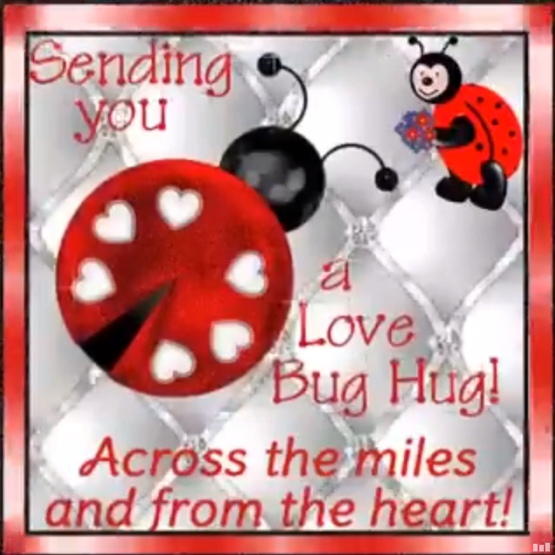 Pin By Norma Jones On Ladybugs Hug Images Hug Pictures Love Hug