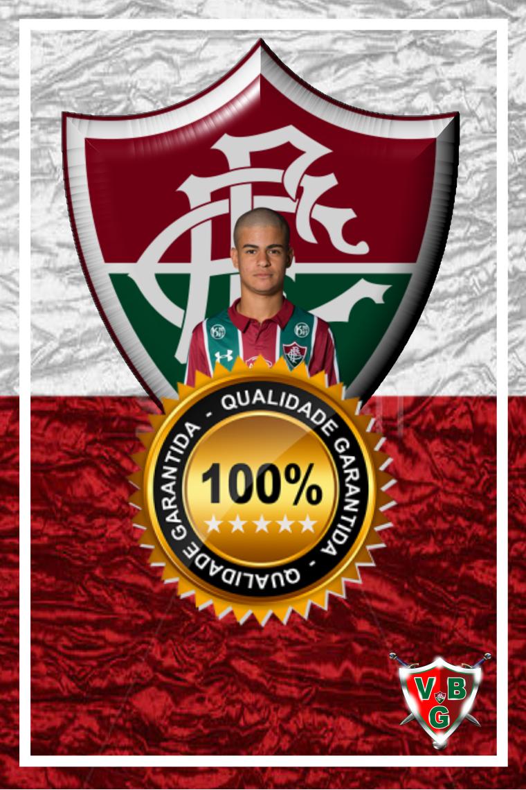 Craque Tricolor Miguel 16 Anos Tricolor Parabens Fluminense