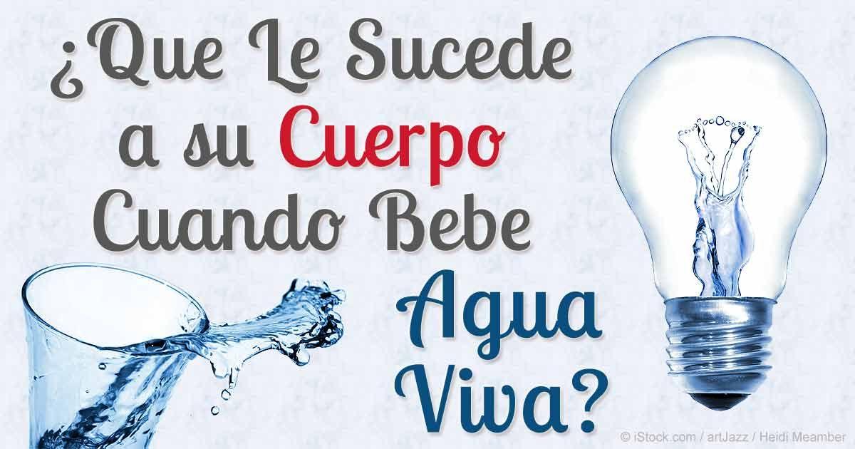 Agua EZ o Agua Viva: la Cuarta Fase del Agua | Fases del agua, Agua ...