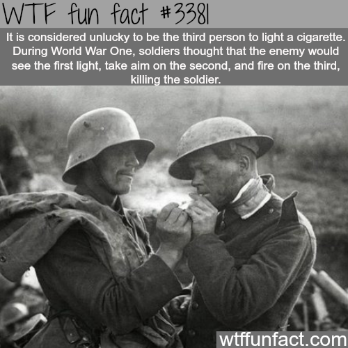 Funny Facts  C B Ww Fact