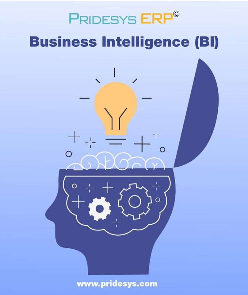 Business Intelligence And Analytics Pridesys It Ltd Business Intelligence Business Data Science