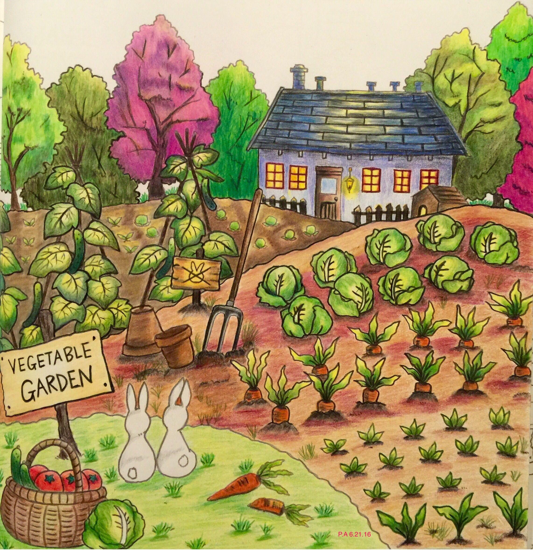 Рисунок огорода картинки