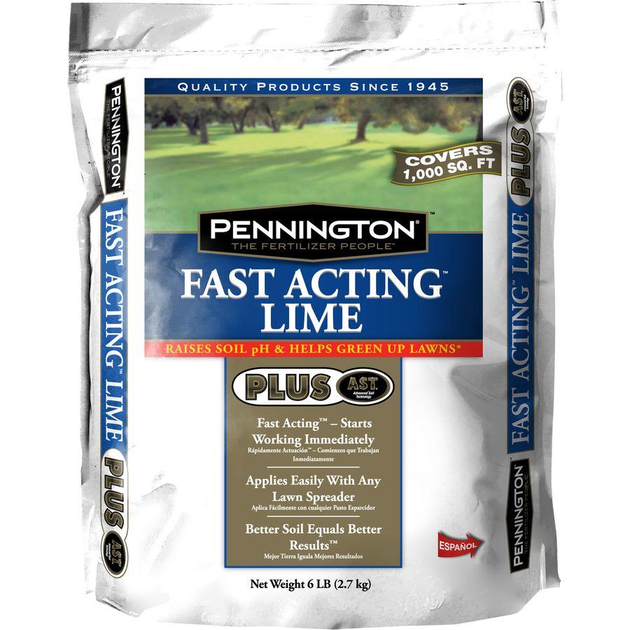 Pennington 6 lb Lime (With images) Succulent potting