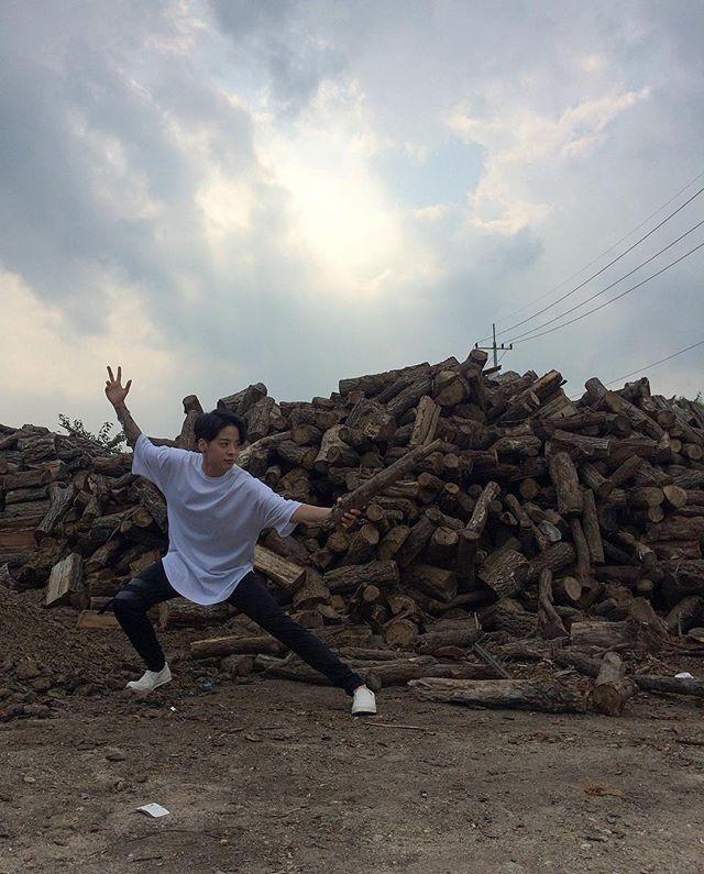Crouching tiger, hidden llama.  와호장라마.|| f(x) Amber Liu