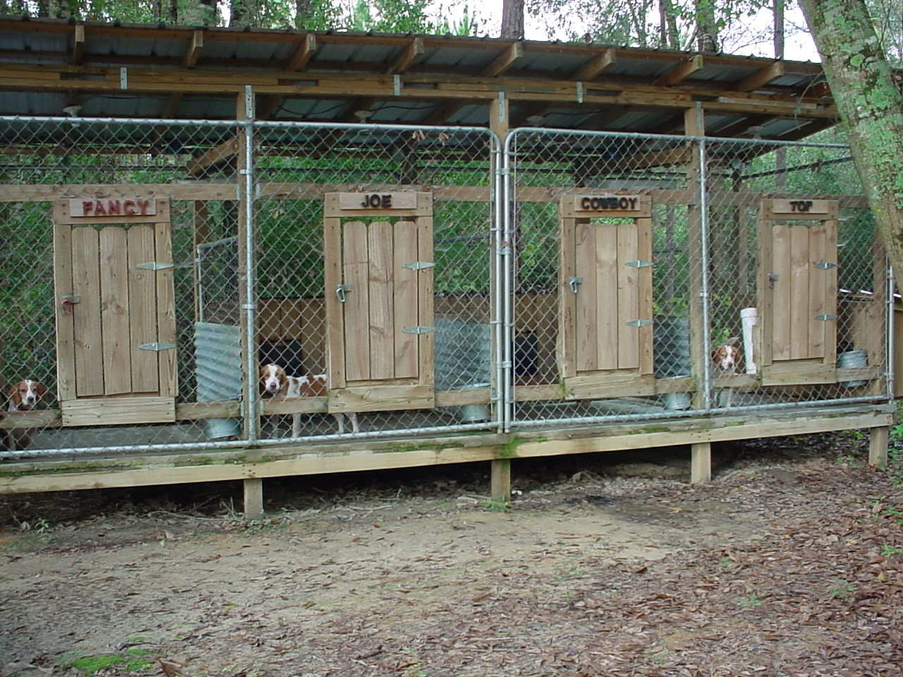 dog hunting kennels southmississippirabbithunting - Dog Kennel Design Ideas