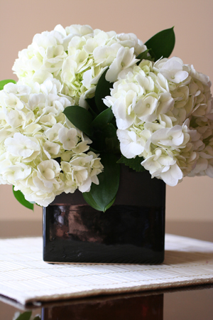 Flowers for Valentine's Day!   Order @ urbanromance-mpls.com