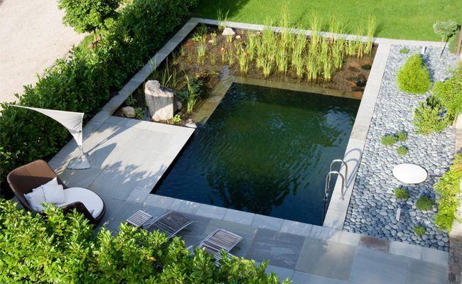 Schwimmteich natural pool (Swimming Pond) Foresta Camping - reihenhausgarten vorher nachher