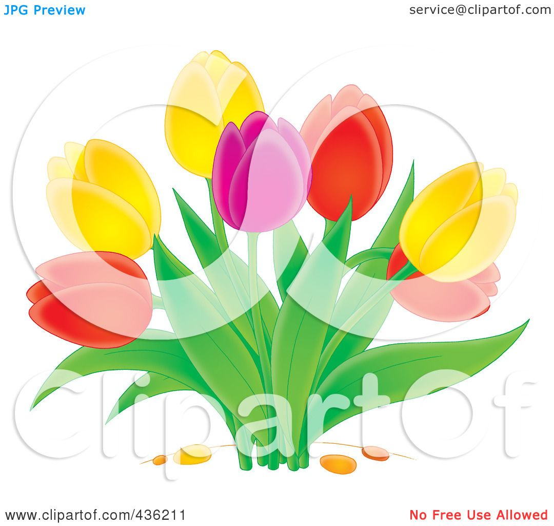 Royalty-Free-RF-Clipart-Illustration-Of-A-Colorful-Tulip-Plant-1024436211.jpg 1.080×1.024 piksel