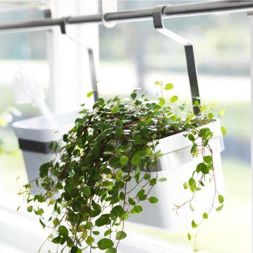 Jardiniere Balcon Ikea