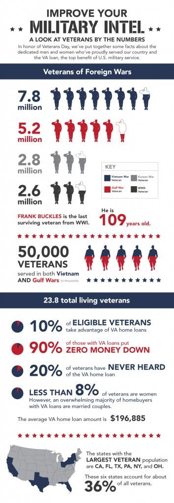 Veterans Day Facts infographic filled with facts on Veterans Day ...
