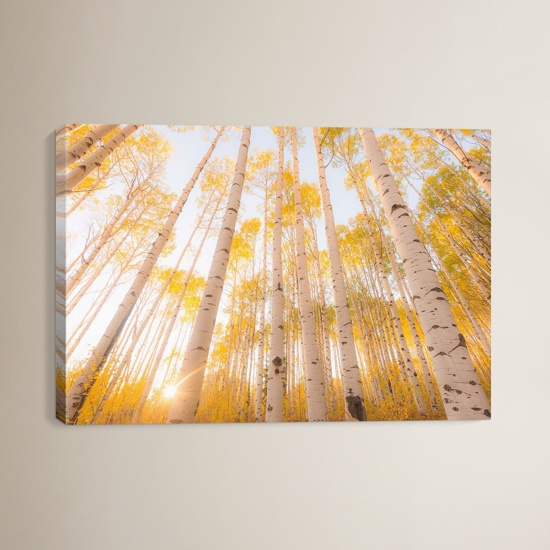 Colorado Canvas Print | Products | Pinterest | Canvases, Printing ...