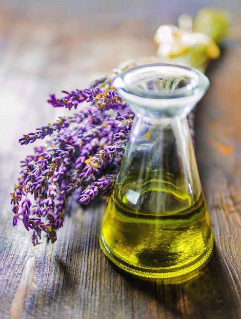Lavendel verfügt über ätherische Öle, die in der Parfümindustrie und Pharmazie verwendet werden. (Foto: Fotolia.de)