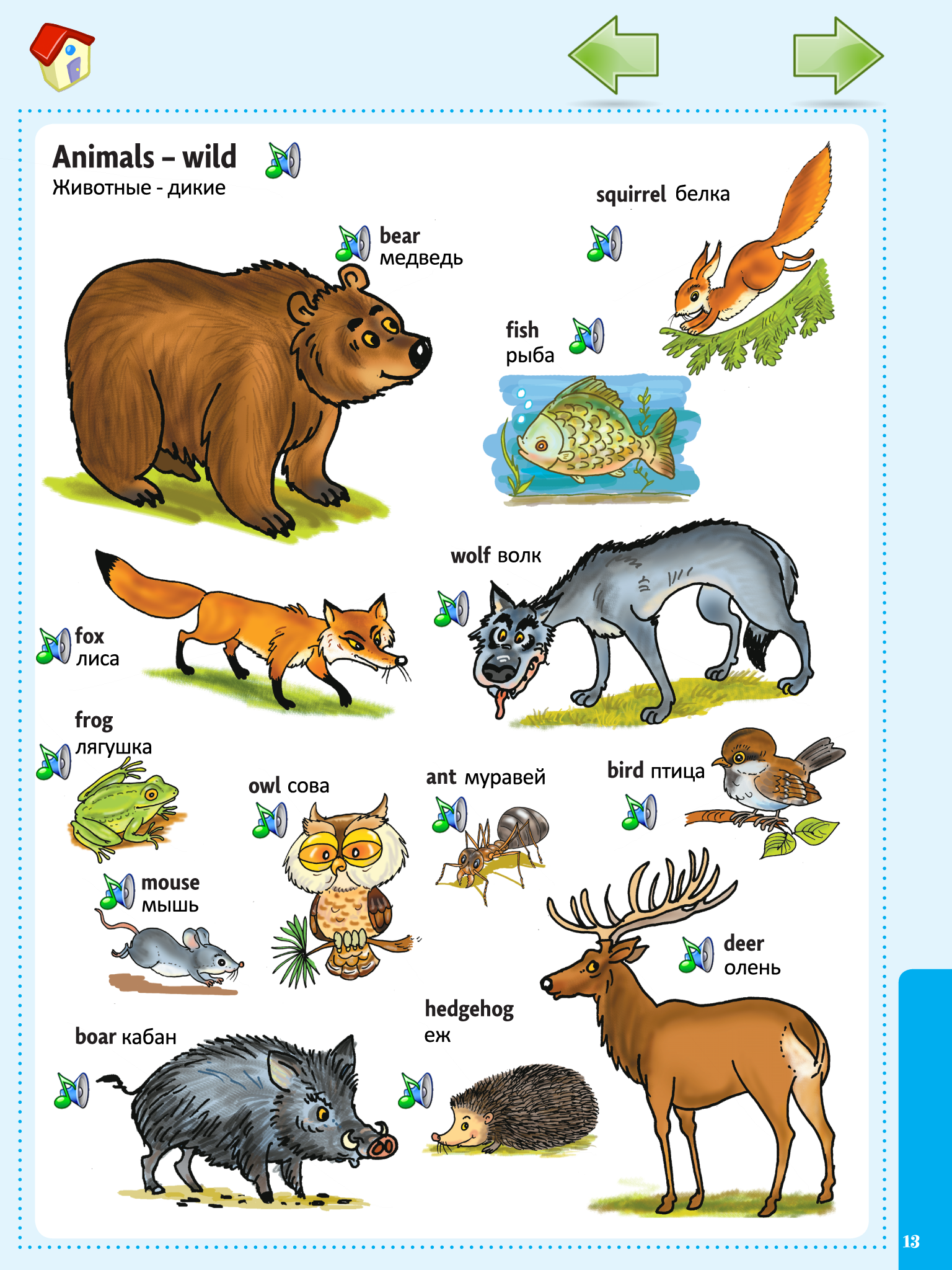 Picture Dictionary For Kids In English