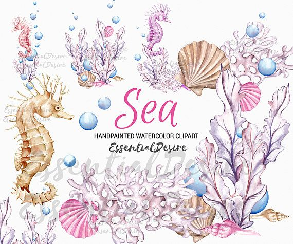 Blue Shells Seahorse Beach Nautical Childrens Birthday Party Invitations