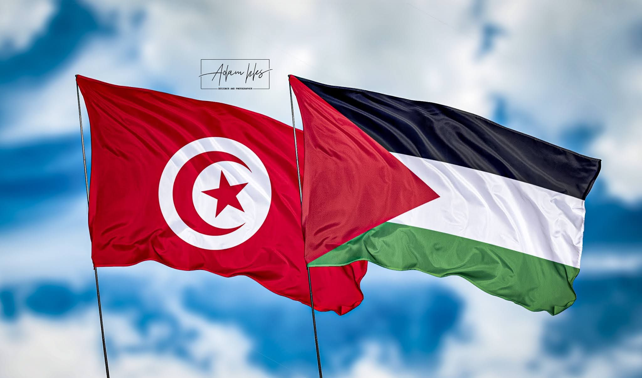 خلفيات تونس وفلسطين اجمل خلفيات اعلام تونس وفلسطين ترفرف في السماء Canada Flag Country Flags Flag