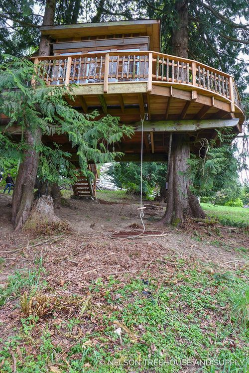 Two Treehouse Remodels Tree House Tree House Designs