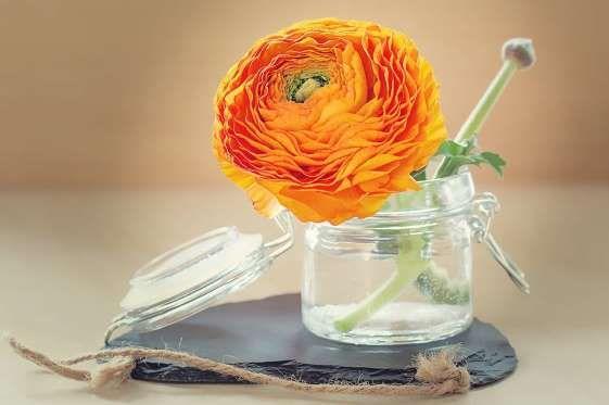 As flores dão sempre um toque fresco e rejuvenescido à casa. E se for de forma criativa, melhor aind... - Fornecido por Mood