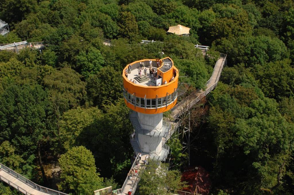 Baumkronenpfad Nationalpark Hainich Nationalpark Ausflug Ausflugsziele