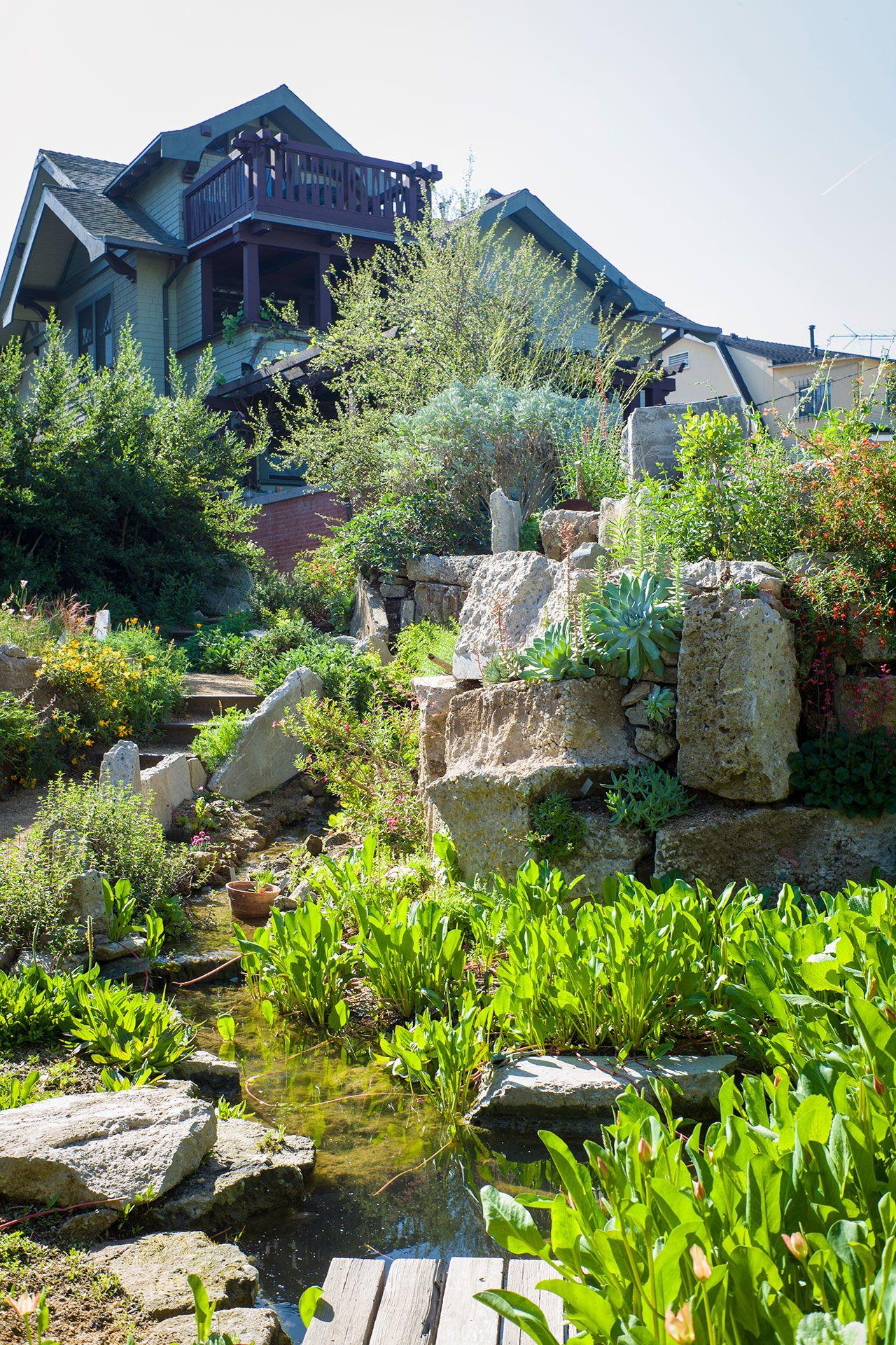 Garden 23 In Oxford Square Theodore Payne Native Plant Garden Tour Garden Tours Native Plant Gardening Sloped Garden