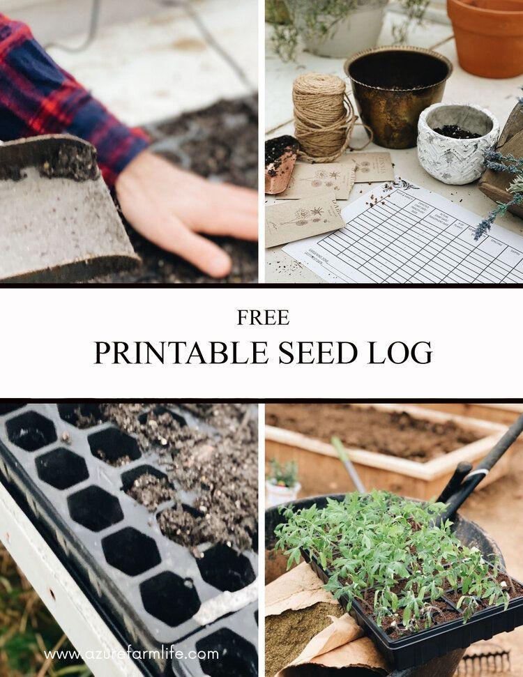 Graine imprimable GRATUITE log.jpg in 2020 Seed starting