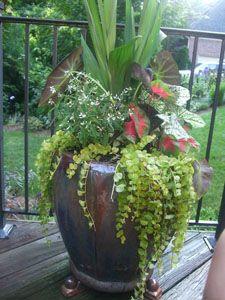 flower pot arrangements outdoor