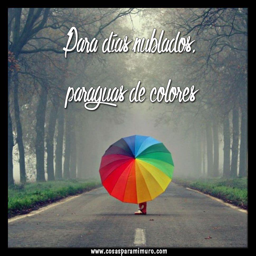 Para Tus Días Nublados Paraguas De Colores Dia De Lluvia