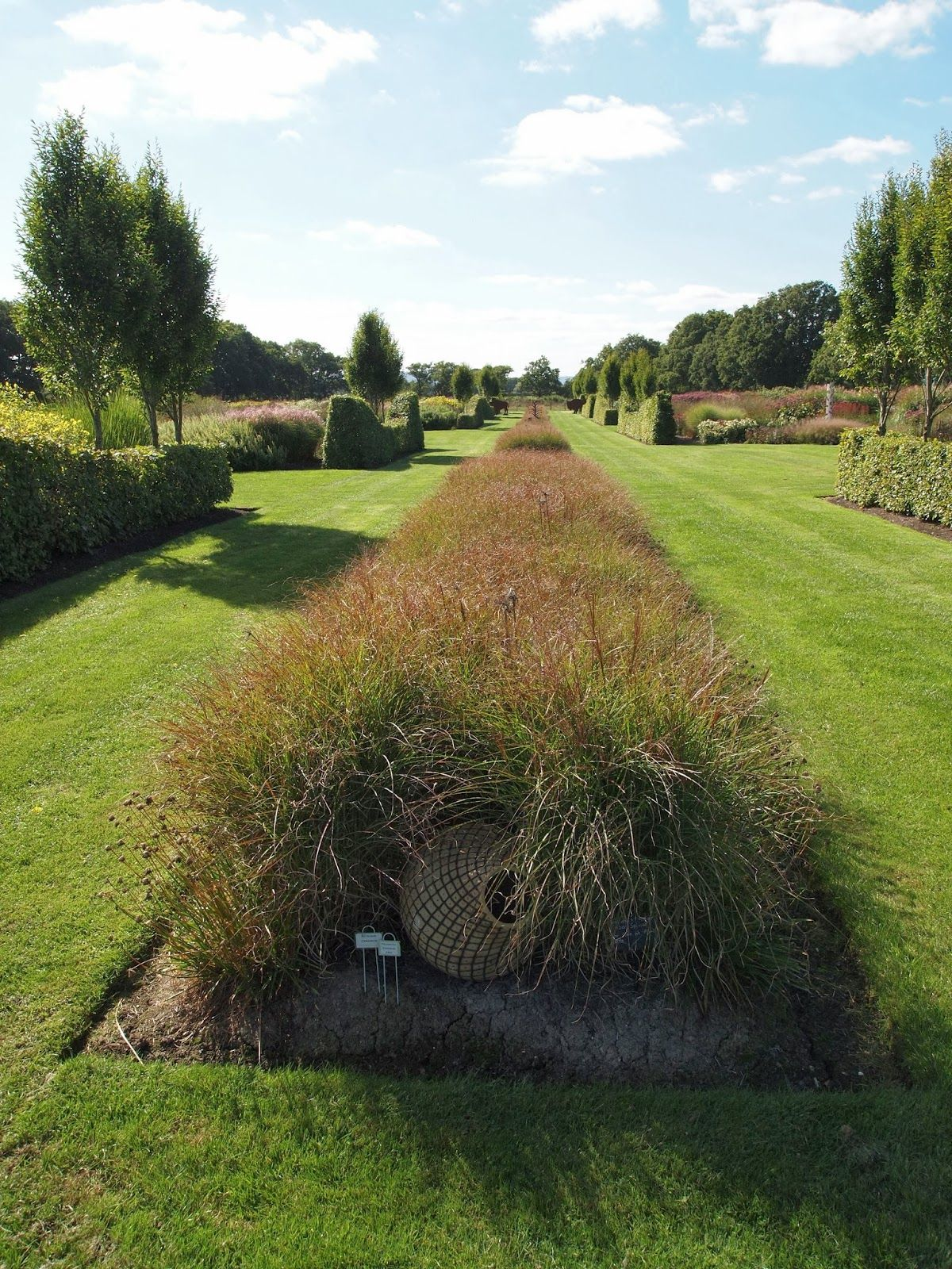 Sussex Prairies Gardens Australian Garden Design Outdoor Landscaping British Garden