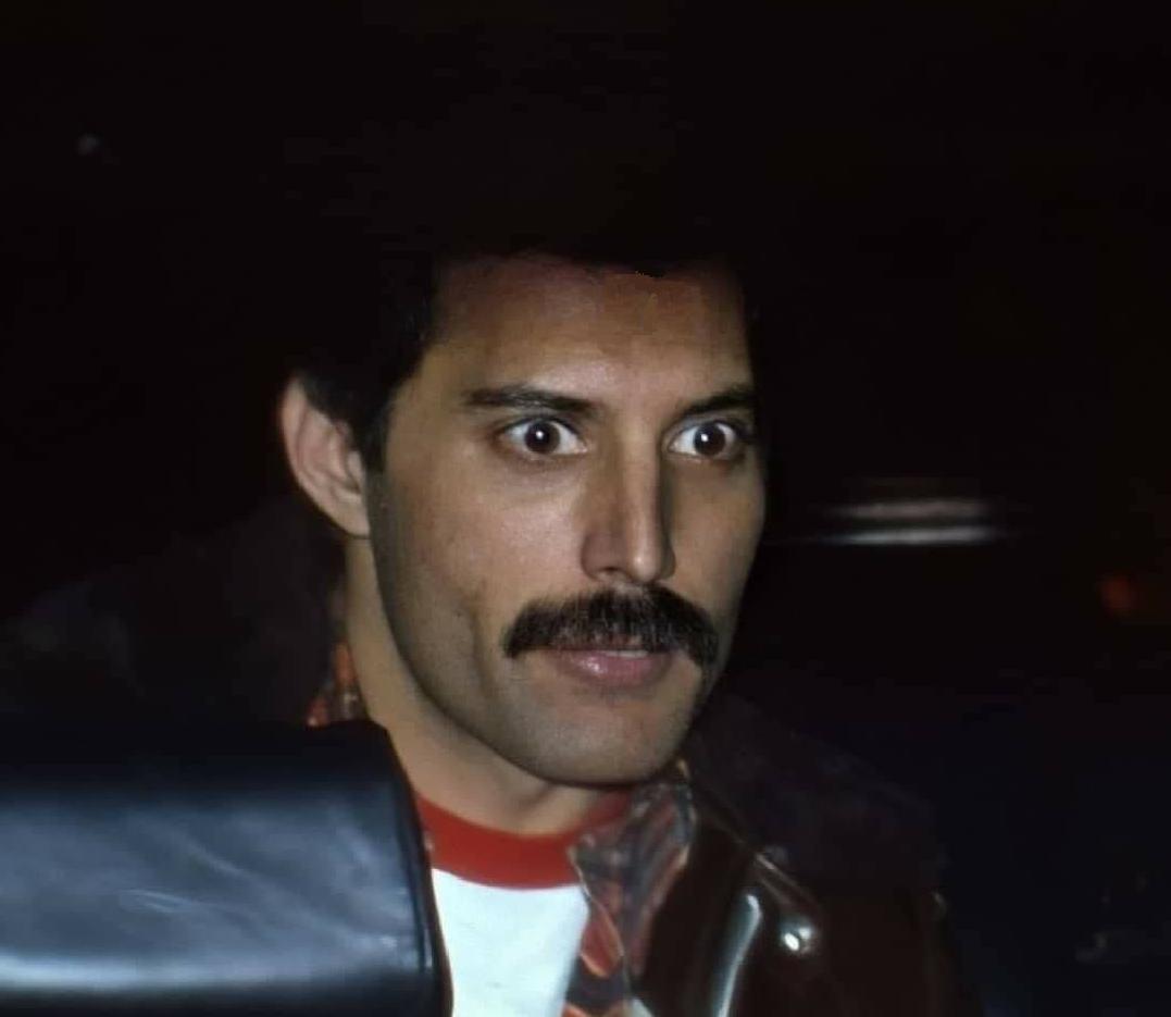 Pin On Semplicemente Freddie Mercury