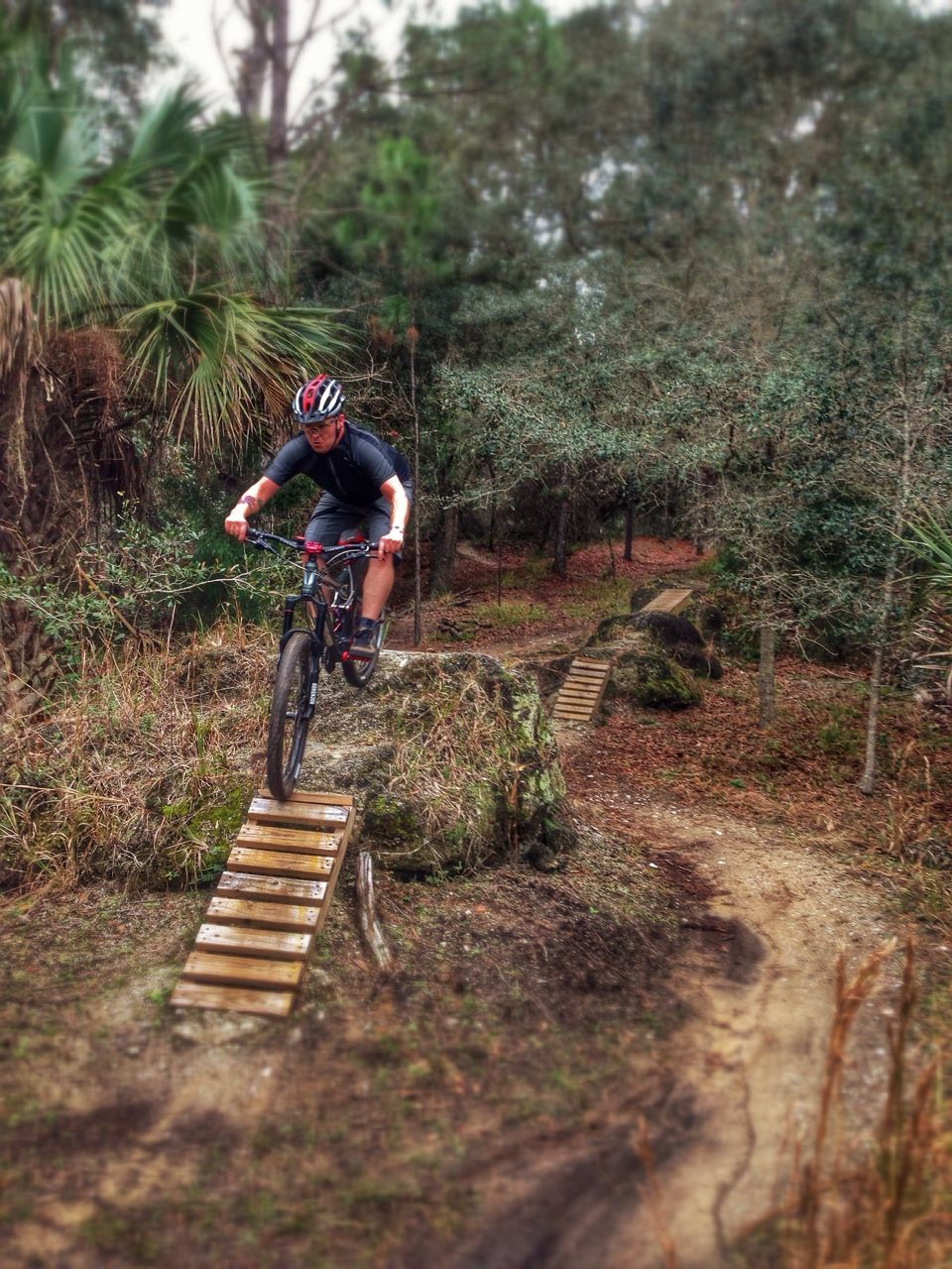 Some Swoopy Singletrack And Some Free Ride Lines At Graham Swamp Today Mtb Trails Adventure Bike Mountain Biking Gear