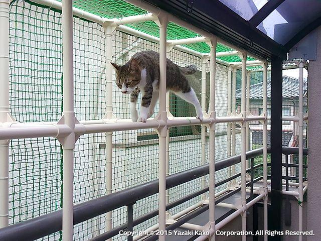 ネコとの共生 After 製作後 猫ハウス 猫部屋 猫用ケージ