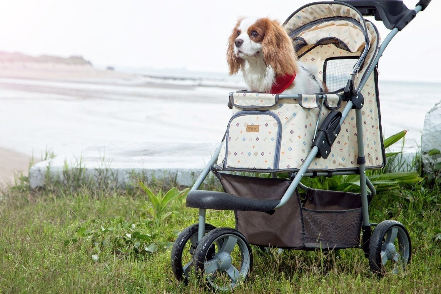 Shop Precious Buggy Pet Stroller from Innopet, Online in