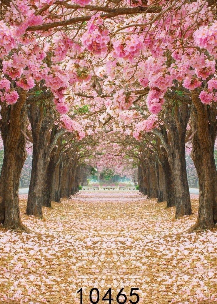 5x7ft Fotografie Hintergrund Kirschbluten Street Studio Fotografie Hintergrund In 2020 Schone Blumen Fotografien Hintergrunde Schone Hintergrund Bilder