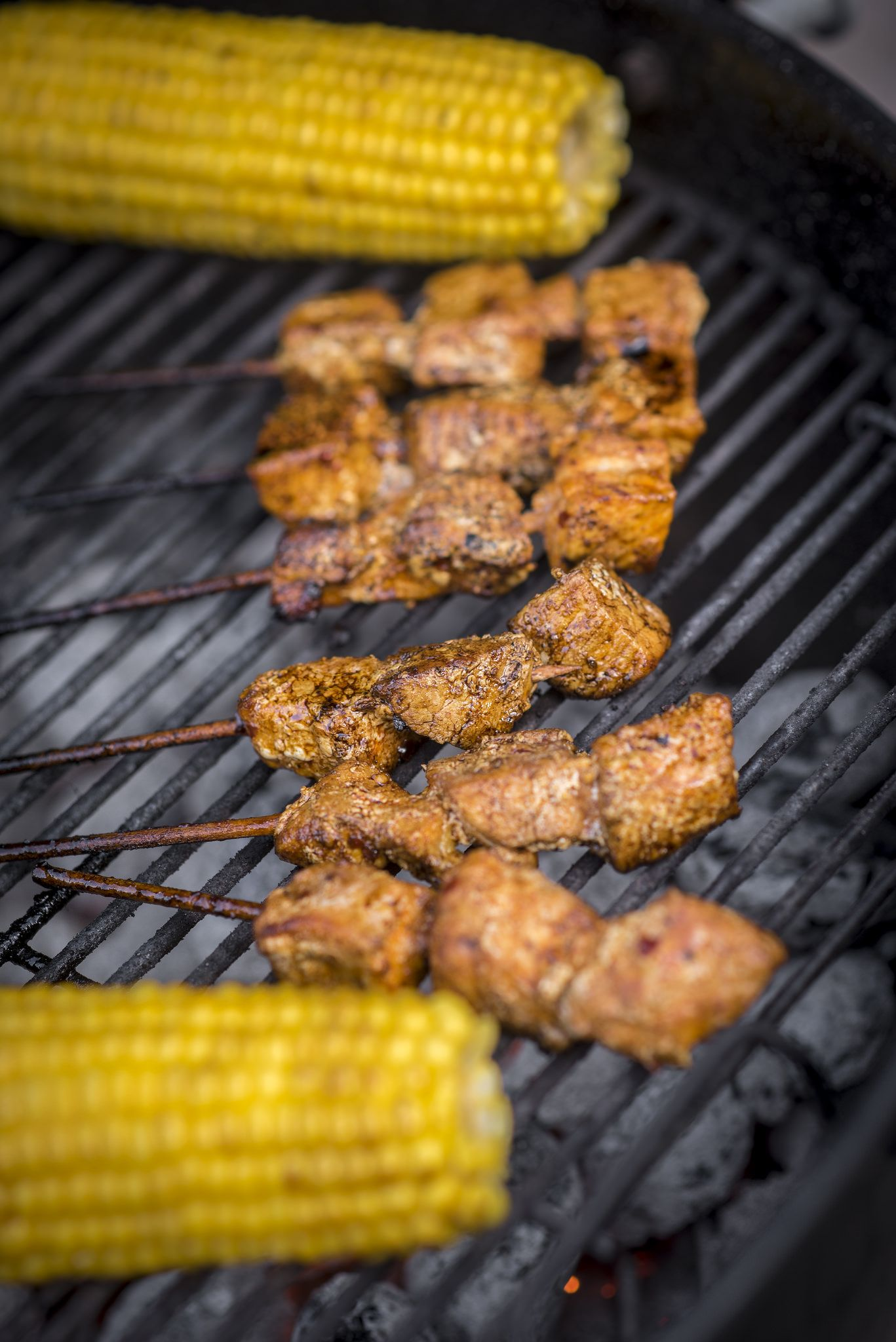 https://flic.kr/p/wSZZnr | 214/365. This hot day ended with some charcoal-grilled skewers
