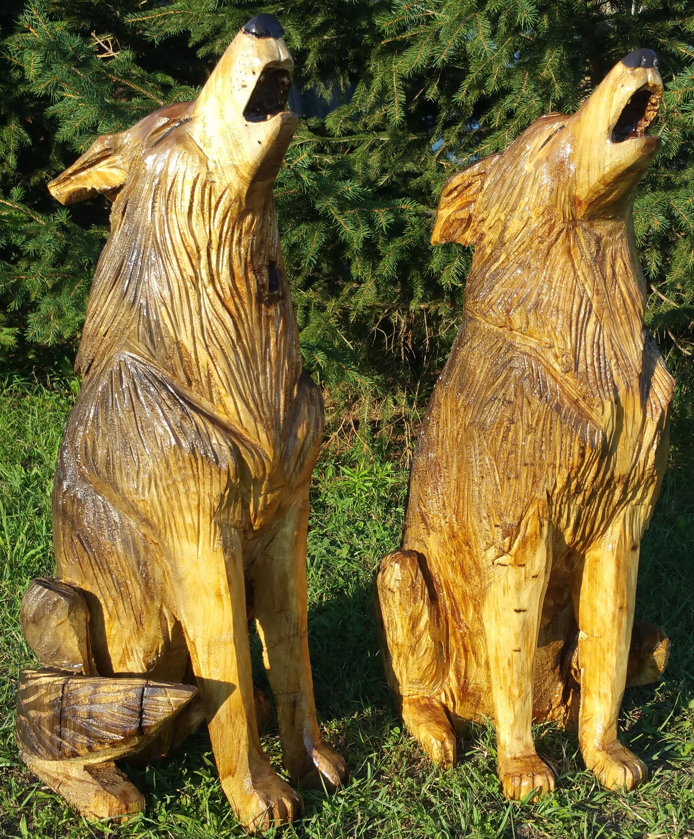 Wolf Pair Howling Wolves