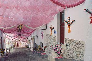 Normal fiesta de las flores slash festas do povo campo maior portugal campo maior festivities 2 660x371