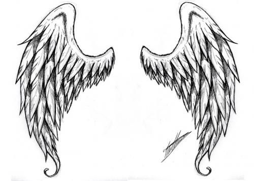 Alas Buscar Con Google Angel Wings Drawing Wing Tattoo Designs Wings Tattoo