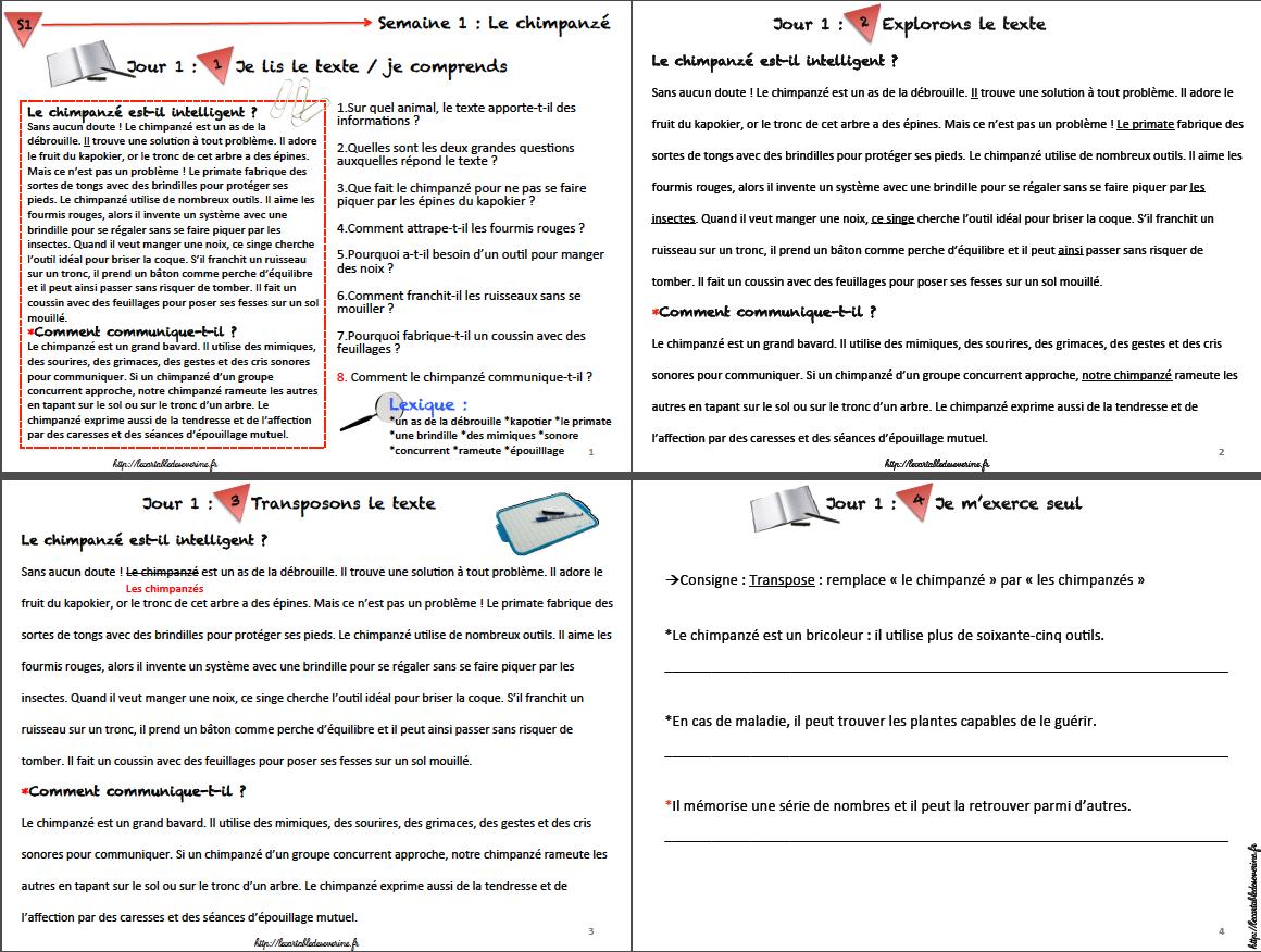 Bien connu Page introuvée ! Au secours   Les cartables, Cm1 et Grammaire MJ51