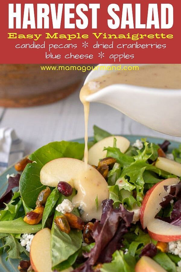 Harvest Salad Harvest Salad with maple vinaigrette combines fresh greens, candied pecans, crisp apples, dried cranberries, and tangy blue cheese all tossed together in a deliciously easy dressing.