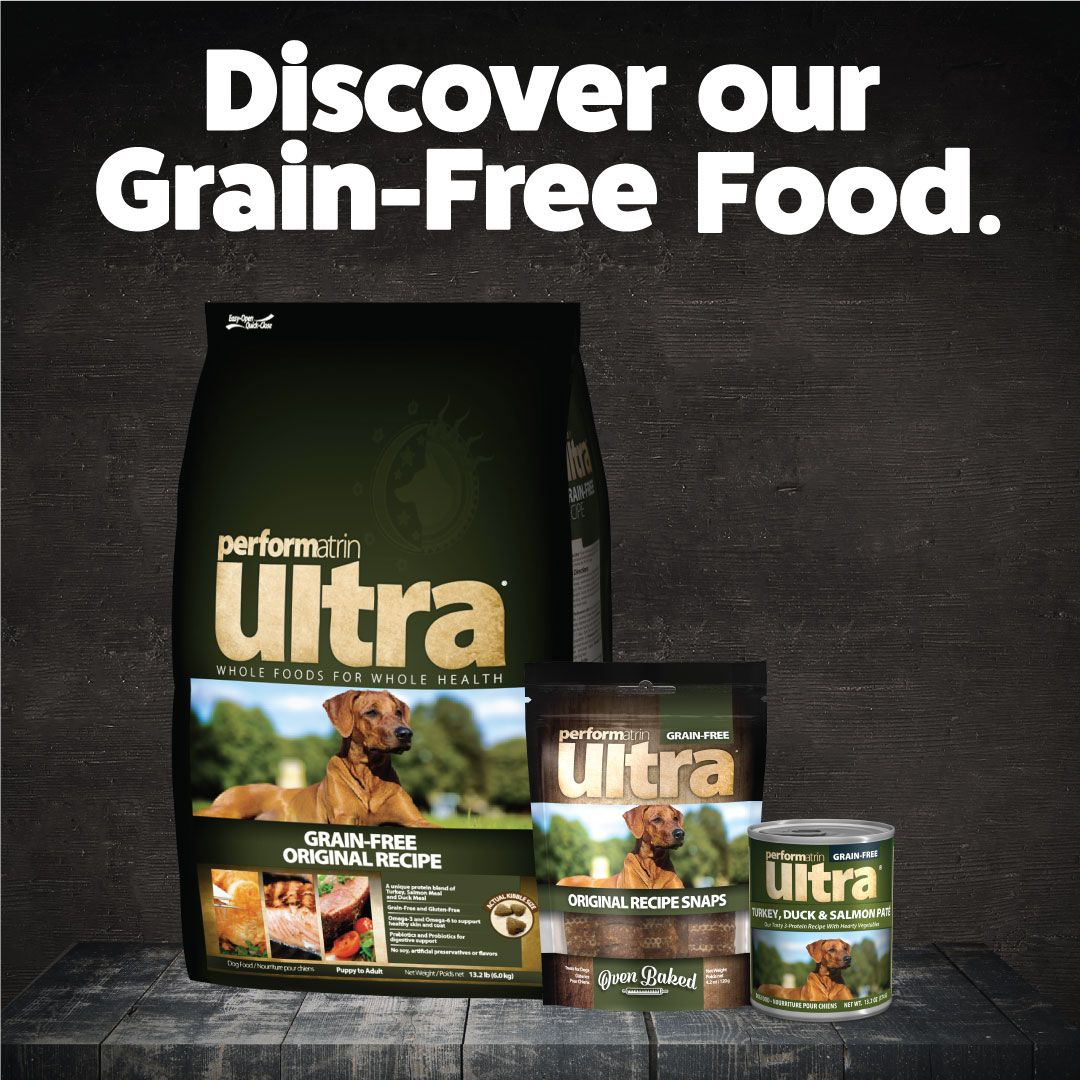 Performatrin Ultra Our Exclusive Line Of Dog And Cat Food Is Now