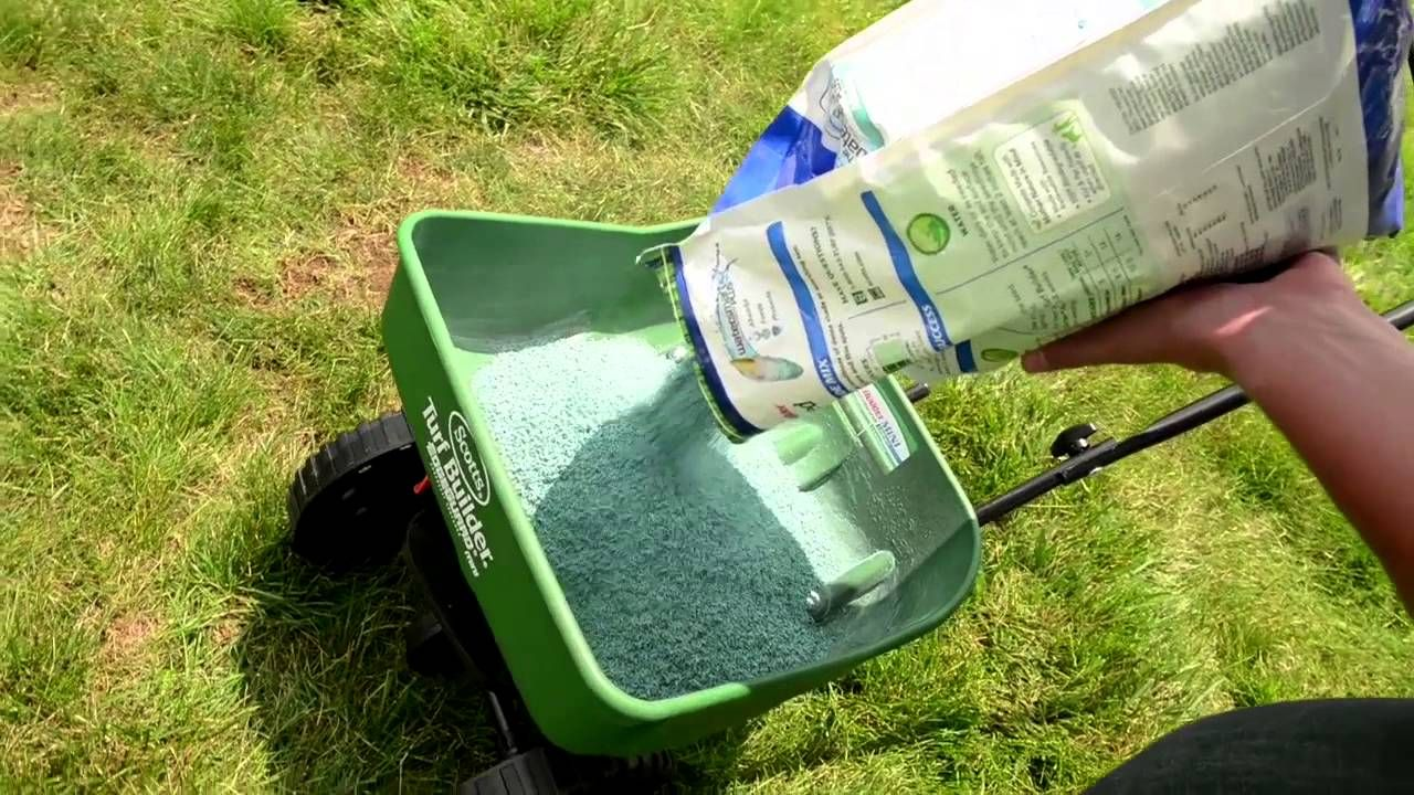 How to overseed your lawn with scotts turf builder ace